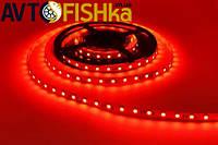 Світлодіодна стрічка червона 60 SMD (35\28) 12V / 5 м