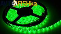 Світлодіодна стрічка зелена 60 SMD (35\28) 12V / 5 м