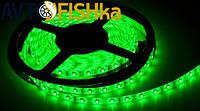 Світлодіодна стрічка зелена 60 SMD (35\28) 24V / 5 м, фото 1