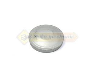 Колпачок тормозного диска заднего на Renault Trafic III 2014->- Renault (Оригинал) - 8200655506