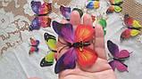 Бабочки на булавках разноцветные - в наборе 12шт. разных размеров, пластик, фото 2