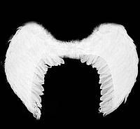 Крила ангела білі