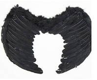 Крила ангела чорні
