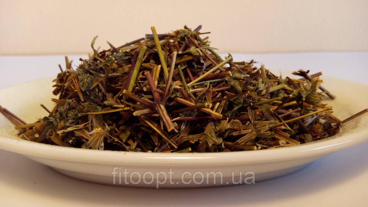 Череда (трава) 50 грамм