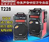 Мультимедиа активная караоке стереосистема Temeisheng T228 пара, фото 3