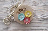 Набор цветов WOODchic Fabulous Color, 3 шт.
