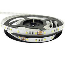 LED лента Rishang SMD2835, 60шт/м, 12W/m, IP33, 24V