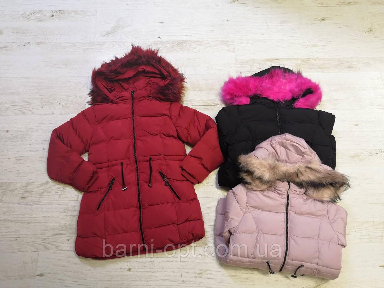 Куртки зимние на девочек оптом, Seagull, 8-16 рр