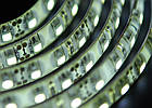 Светодиодная лента Lumex SMD 3528 (120 LED/m) IP54 Econom, фото 4