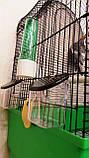 Клітка для папуги 50*30*68см, фото 5