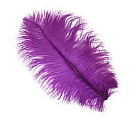 Перо страуса Декоративные (Перья) Фиолетовые 25-30 см 1 шт, фото 1