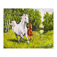 Алмазная вышивка Белоснежка «На воле»