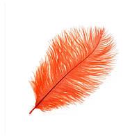 Перо страуса Декоративные (Перья) Оранжевые 30-35 см 5 шт/уп, фото 1