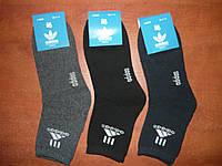 """Мужские махровые носки """"в стиле"""" Adidas. р.41-46. Высокие., фото 1"""