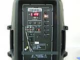 """Колонка с аккумулятором Ailiang F15AK-DT BT, 15"""" дюймов, 150W, радиомикрофон, пульт, гитарный вход, фото 2"""