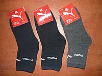 """Подростковые махровые носки """"в стиле"""" Puma. р. 35-41, фото 1"""