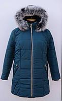 Женская,зимняя куртка с меховой натуральной,съемной опушкой больших размеров 62+