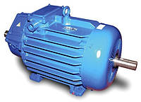 Электродвигатель MTH 011-6 крановый трёхфазный асинхронный 1.4 кВт 890  об./мин. IP54.