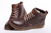 Кожаные зимние ботинки Clarks Originals Dayton коричневые