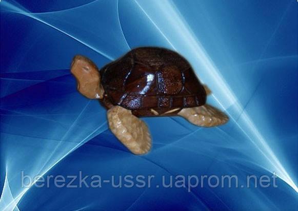 Шкатулка Черепашка