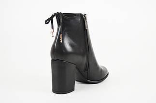 Классические ботинки с оборкой шнурком SALA 9086, фото 3