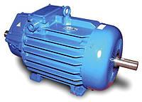 МТН 411-6 Крановый электродвигатель  асинхроннный МТН 411-6 трёхфазный с фазным ротором 22.0 кВт 960 об./мин.