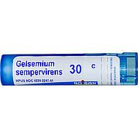 Boiron, Single Remedies, Гельземий вечнозеленый, 30 С, прибл. 80 гранул