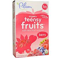 Plum Organics, Органические фруктовые кусочки, ягоды, для детей с 12 месяцев, 5 упаковок, 0,35 унции (10 г) каждая