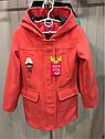 Демисезонное кашемировое детское пальто Hello на девочку размеры 32- 38, фото 2