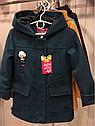 Демисезонное кашемировое детское пальто Hello на девочку размеры 32- 38, фото 4