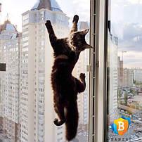 Защитные москитные сетки на окно антикошка