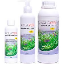 Альгициды (борьба с водорослями)