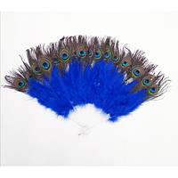 Веер перо павлина (синий)