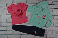 Спортивный костюм тройка, фирма Grace, двунитка, Венгрия