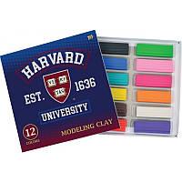 "Пластилин 12 цветов ""Harvard"""