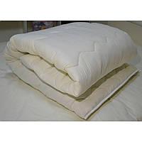 Одеяло силиконовое зимнее двуспальное 170*210 Viluta Relax classic , фото 1