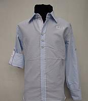 Нежно-голубаяя рубашка для мальчиков 128,140,152 роста