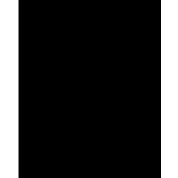 Штативы