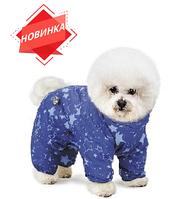 Коллекция Pet Fashion осень-зима
