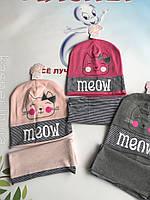 Детский набор с хомутом Meow р.48-50