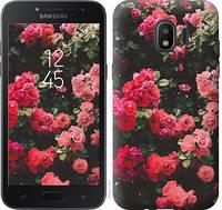 """Чехол на Samsung Galaxy J2 2018 Куст с розами """"2729c-1351-11157"""""""