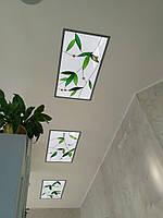 Витражные потолки, фото 1