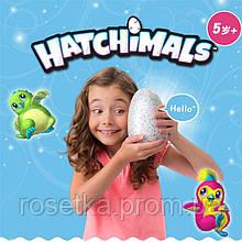 Интерактивная игрушка зверюшка в яйце Hatchimals Who Will You Hatch, Яйцо Хэтчималс дракоша или пингвин