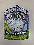 Интерактивная игрушка зверюшка в яйце Hatchimals Who Will You Hatch, Яйцо Хэтчималс дракоша или пингвин, фото 8