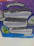 Интерактивная игрушка зверюшка в яйце Hatchimals Who Will You Hatch, Яйцо Хэтчималс дракоша или пингвин, фото 7