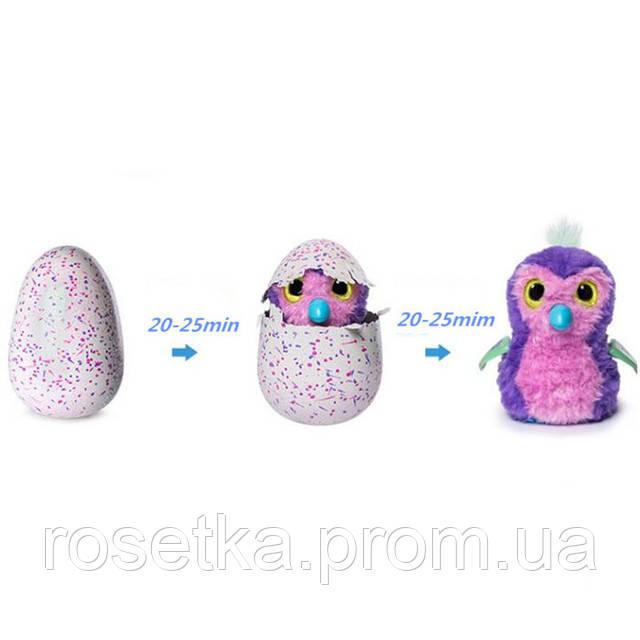 зверюшка в яйце