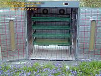 """Инкубатор с автоматическим переворотом яиц """"Фермер"""" - на 600 яиц (4 лотка)"""
