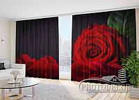 """Фото Шторы в зал """"Роза на черном фоне"""" 2,7м*2,9м (2 м по 1,45м), тесьма"""