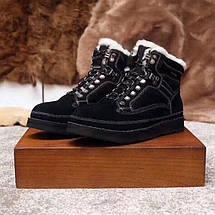 UGG Mens Bethany Chestnut Мужские зимнее ботинки на шнурках , фото 3