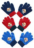 Перчатки для мальчиков Pets оптом.